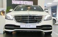 Cần bán xe Mercedes 450L sản xuất 2018, màu trắng giá 4 tỷ 199 tr tại Tp.HCM