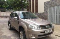 Bán Ford Escape năm 2010, màu hồng số tự động  giá 380 triệu tại Hà Nội