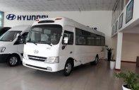 Bán Hyundai County sản xuất năm 2017, màu trắng, nhập khẩu giá 1 tỷ 290 tr tại Tp.HCM