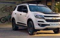 Bán Chevrolet Trailblazer số tự động, 1 cầu (giá tốt, nhiều ưu đãi) giá 895 triệu tại Tp.HCM