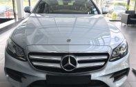 Bán xe Mercedes E300 năm 2018, màu bạc giá 2 tỷ 769 tr tại Tp.HCM