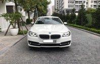 Cần bán xe BMW 5 Series 520i sản xuất 2014, màu trắng, nhập khẩu giá 1 tỷ 450 tr tại Hà Nội