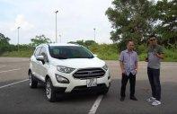Bán Ford EcoSport đời 2018, Hotline 0901.979.357 - Hoàng giá 545 triệu tại Đà Nẵng