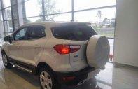 Bán Ford EcoSport năm sản xuất 2018, màu trắng, giá tốt giá 545 triệu tại Bình Thuận