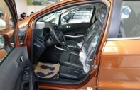 Bán Ford EcoSport sản xuất năm 2018 giá cạnh tranh giá 689 triệu tại Tp.HCM