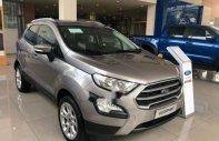 Bán xe Ford EcoSport Trend năm sản xuất 2018, màu bạc giá 550 triệu tại Tp.HCM