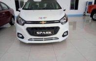 Bán xe Chevrolet Spark LT năm 2018, màu trắng giá 329 triệu tại TT - Huế
