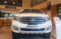 Cần bán xe Ford Everest sản xuất năm 2018, màu trắng giá 1 tỷ 399 tr tại Hà Nội