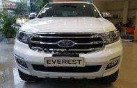 Bán Ford Everest Titanium 2.0L 4x4 AT năm 2018, màu trắng, nhập khẩu   giá 1 tỷ 177 tr tại Hà Nội