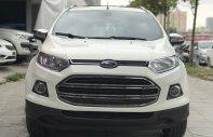 Cần bán lại xe Ford EcoSport 2016, màu trắng, giá chỉ 565 triệu giá 565 triệu tại Hà Nội