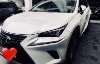 Bán xe Lexus NX sản xuất năm 2017, nhập khẩu giá 2 tỷ 555 tr tại Tp.HCM