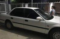 Bán ô tô Honda Accord 1993, màu trắng, nhập khẩu nguyên chiếc, 90tr giá 90 triệu tại Tây Ninh