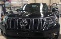 Bán Toyota Prado đời 2018, màu đen, nhập khẩu giá 2 tỷ 340 tr tại Tp.HCM