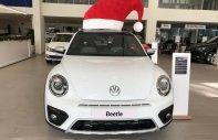 Bán ô tô Volkswagen Beetle Dune năm 2018, xe nhập chính hãng, xe mới giao ngay. LH 0931 878 379 giá 1 tỷ 499 tr tại Tp.HCM