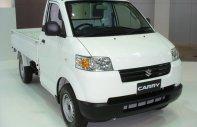 Bán xe tải Suzuki Carry Pro 705kg số 1, nhập khẩu có máy lạnh tại An Giang giá 312 triệu tại An Giang