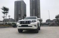 Cần bán xe Toyota Prado đời 2018, màu trắng, xe siêu lướt thơm mùi mới - Liên hệ: 094-711-6996 Mr Thanh giá 2 tỷ 625 tr tại Hà Nội