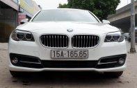 Bán ô tô BMW 5 Series 528i sản xuất 2014, nhập khẩu giá 1 tỷ 500 tr tại Hà Nội