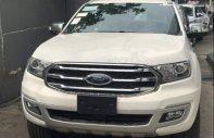 Bán Ford Everest sản xuất 2018, màu trắng, xe nhập giá 1 tỷ 177 tr tại Tp.HCM