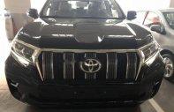 Bán xe Toyota Prado 2.7L 2019, màu đen, nhập khẩu  giá 2 tỷ 340 tr tại Tp.HCM