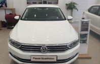 Bán Volkswagen Passat Blue Motion - trắng giá 1 tỷ 480 tr tại Tp.HCM