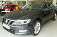 Bán xe Volkswagen Passat Bluemotion, xe Đức nhập khẩu chính hãng, hỗ trợ vay, trả trước chỉ 400 triệu. LH: 0933 365 188 giá 1 tỷ 480 tr tại Tp.HCM