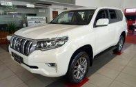 Bán xe Toyota Prado VX đời 2019, màu trắng, nhập khẩu giá 2 tỷ 348 tr tại Tp.HCM