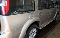 Bán ô tô Ford Everest 2.5L 4x2 MT sản xuất năm 2010, màu vàng, giá chỉ 470 triệu giá 470 triệu tại Bình Thuận