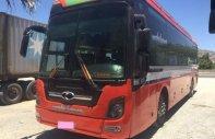 Cần bán Hyundai Universe năm sản xuất 2011, màu đỏ giá 1 tỷ 170 tr tại Tp.HCM