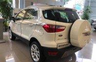 Cần bán Ford EcoSport đời 2019, màu trắng, xe nhập giá Giá thỏa thuận tại Hà Nội