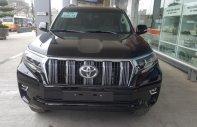 Toyota Land Cruiser Prado 2019, nhập khẩu, giao ngay, hotline 0987404316 - 0355283111 giá 2 tỷ 340 tr tại Hà Nội