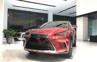Bán xe Lexus  NX 300 sản xuất 2019, màu đỏ, nhập khẩu giá 2 tỷ 510 tr tại Hà Nội