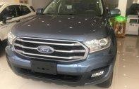Bán ô tô Ford Everest AB MT sản xuất năm 2019, nhập khẩu nguyên chiếc giá 999 triệu tại Tp.HCM