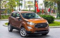 Bán Ford EcoSport đời 2019, màu nâu, giá tốt giá 520 triệu tại Tp.HCM