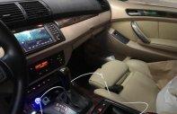 Bán xe BMW X5 đời 2004, màu nâu, nhập khẩu   giá 280 triệu tại Hà Nội