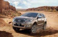 Ford Everest 2.0 Biturbo 2019, nhập khẩu, giá tốt nhất thị trường, xe giao ngay - LH 0974286009 giá 1 tỷ 315 tr tại Hà Nội