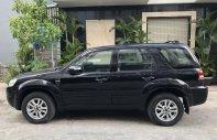 Cần bán xe Ford Escape 2.3L 4x4 XLT đời 2010, màu đen! giá 395 triệu tại Tp.HCM