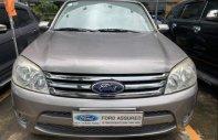 Bán Ford Escape sản xuất năm 2010, màu xám giá 369 triệu tại Tp.HCM
