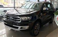 Cần bán Ford Everest Ambiente 2.0 MT 4x2 sản xuất năm 2019, màu đen, nhập khẩu nguyên chiếc giá 999 triệu tại Tp.HCM