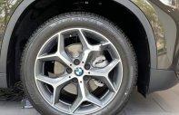 Cần bán BMW X1 đời 2019, xe nhập, giá tốt giá 1 tỷ 829 tr tại Tp.HCM