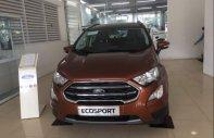 Bán Ford Ecosport 2019 đã lột xác hoàn toàn và phân phối 5 phiên bản phù hợp với mọi gia đình giá 645 triệu tại Hà Nội