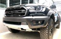 Ford Quảng Ninh bán Ford Ranger Raptor sản xuất năm 2019, màu đen, nhập khẩu nguyên chiếc giá 1 tỷ 190 tr tại Quảng Ninh