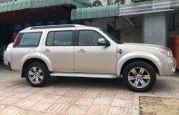 Bán ô tô Ford Everest Limited năm sản xuất 2009, màu vàng, giá tốt giá 485 triệu tại Tp.HCM