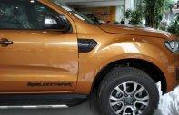 Cần bán Ford Ranger Wildtrak năm sản xuất 2019 giá tốt giá 870 triệu tại Hà Nội