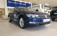 Bán ô tô Volkswagen Passat BlueMotion đời 2018, màu xanh lam, nhập khẩu chính hãng giá 1 tỷ 480 tr tại Tp.HCM