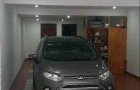 Bán Ford EcoSport đời 2015, màu xám, số sàn giá 450 triệu tại Đà Nẵng