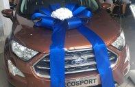 Bán Ford EcoSport Titanium 1.5L AT sản xuất năm 2019, màu nâu giá 625 triệu tại Tp.HCM