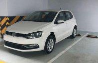 Bán Volkswagen Polo đời 2017, màu trắng, nhập khẩu giá 670 triệu tại Hà Nội