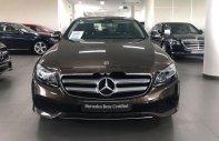 Mercedes Phú Mỹ Hưng bán Mercedes E250 sản xuất 2017, màu nâu, nhập khẩu giá 2 tỷ 100 tr tại Tp.HCM
