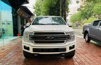 Bán Ford F150 Limited sản xuất 2019, xe nhập Mỹ giá 4 tỷ 190 tr tại Hà Nội