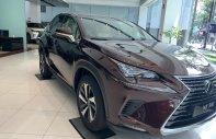 Cần bán xe Lexus NX đời 2019, xe nhập giá 2 tỷ 510 tr tại Tp.HCM